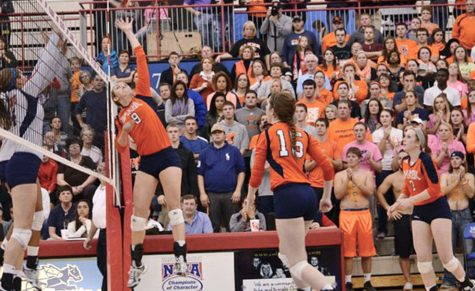 2014 Volleyball Preview