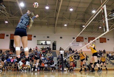 Volleyball defeats Ottawa for fifth straight win