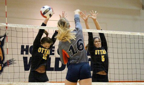 Volleyball loses two in doubleheader