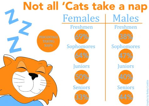 Cat naps: More than half of BU students regularly take naps