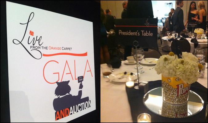 Gala raises more than $300,000