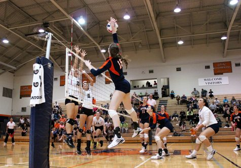 Volleyball wins seventh straight