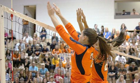 2016 volleyball preview