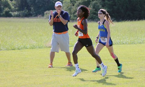 Cross country heads to conference