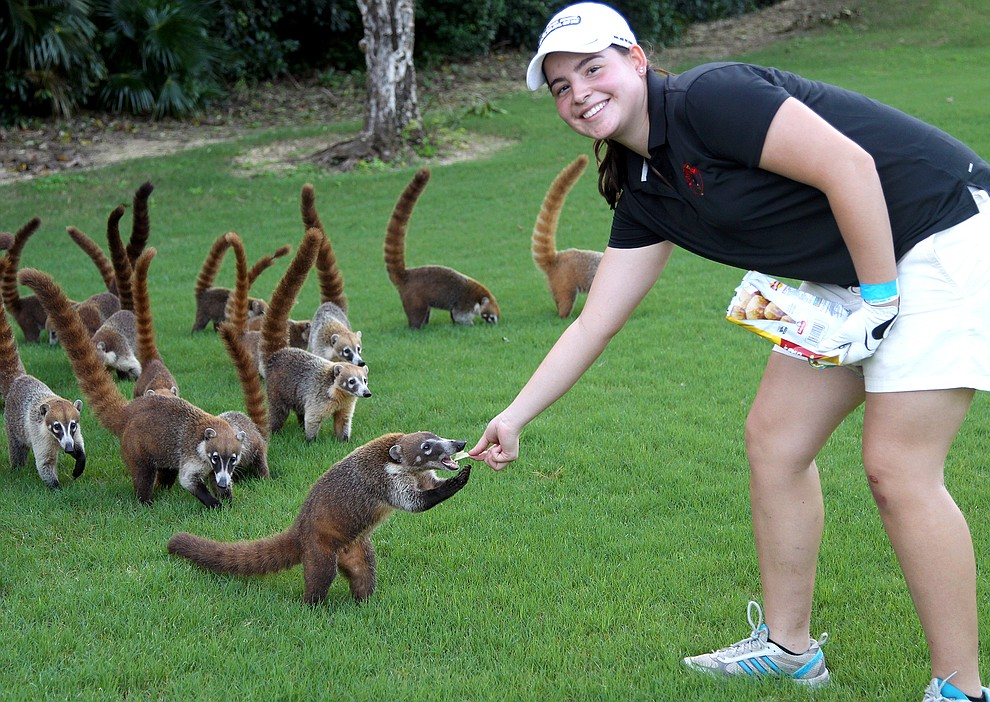 Anna Wright feeds a pack of white-nosed coatis while in Playa del Carmen, Mexico, as part of Associate Professor of History Leonard Ortizs travel interterm. Ortiz will take another group there for a January 2016 travel interterm.