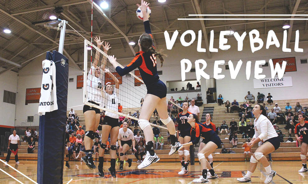 2015 volleyball preview