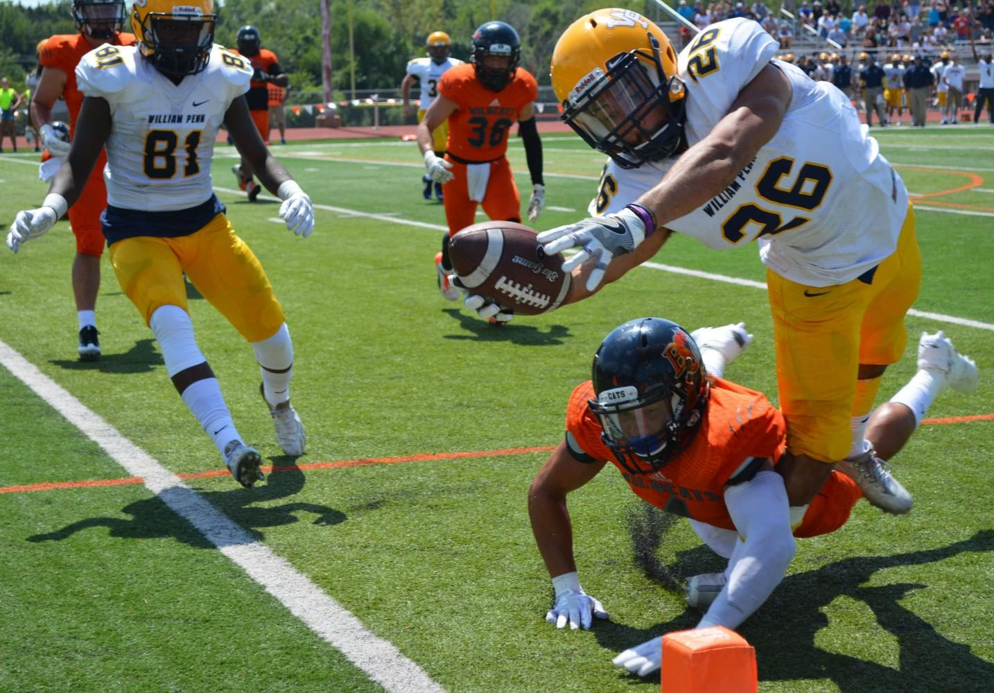 A Wildcat defender attempts to block a William Penn running back from stretching out over the goal line. The Statesmen were ahead 27-24 in the 4th quarter until the Wildcats answered with 1:30 left on the clock to end the game 31-27.