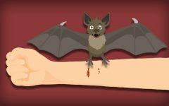 Baker's bats bite: From freshman to 'Batgirl'
