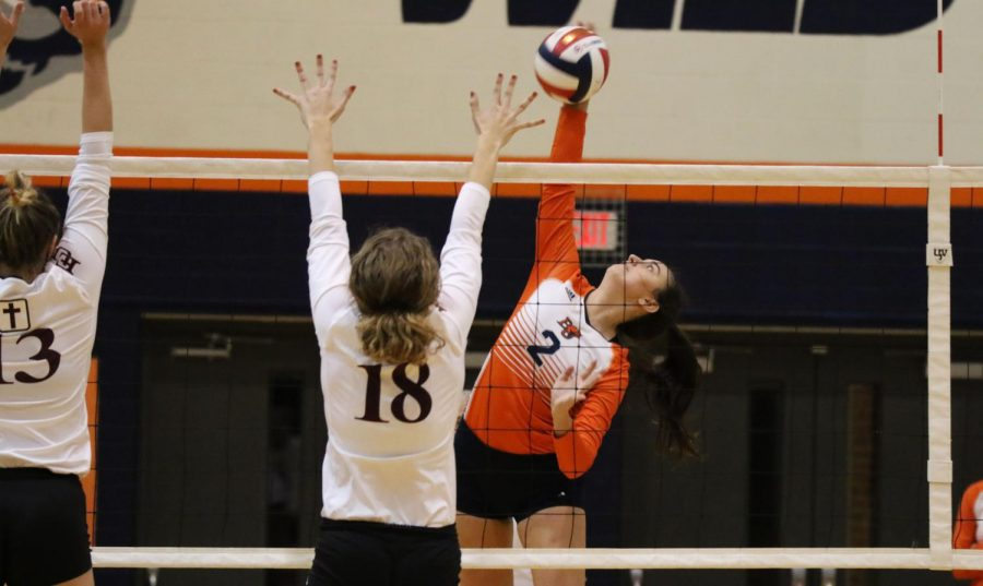 Sophomore+Taylor+Kile+contributed+with+seven+kills+for+the+Wildcats+against+the+Crusaders+to+open+the+season.+