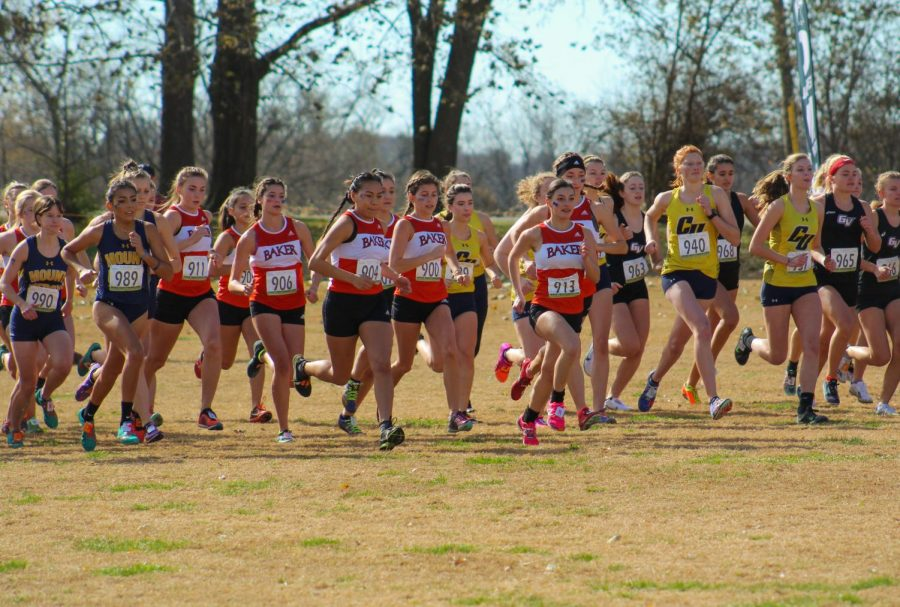 With+the+sound+of+the+starting+gun+the+women+are+off.+The+men%27s+and+women%27s+Baker+cross+country+teams+competed+in+the+Heart+cross+country+conference+championships+Nov.+9+at+Central+Methodist+University.+The+men%27s+team+took+the+first+place+championship+title+and+the+women%27s+team+placed+second.