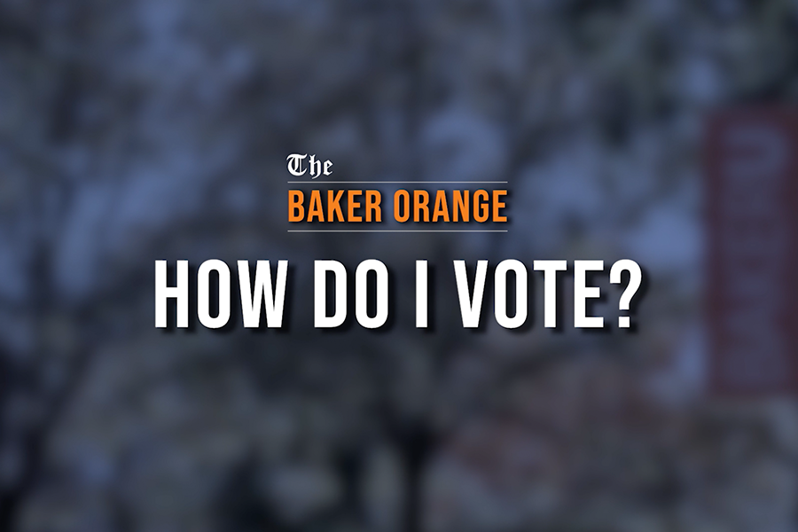 How to vote this election season