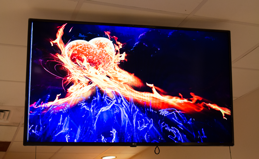 The event included a decorative photo to go with the theme of Fire and Ice.