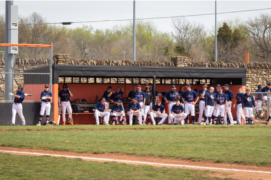 The Baker baseball team cheers on their teammates from the dugout as they play against MidAmerica Nazarene University.
