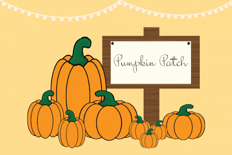 Four of the best local pumpkin patches